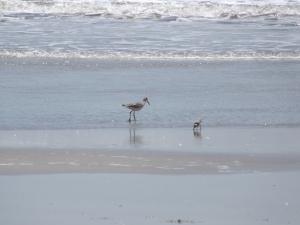 Beach 2013 109